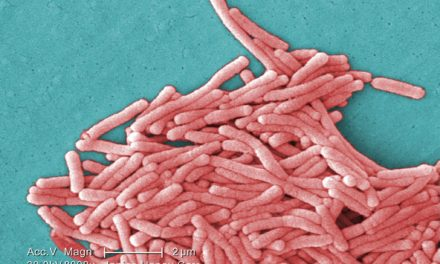 Health officials investigating three Legionnaires' disease cases at two Chicago area nursing homes