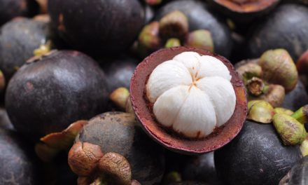 National Cancer Institute awards UIC $1.7 million to research southeast Asian fruit
