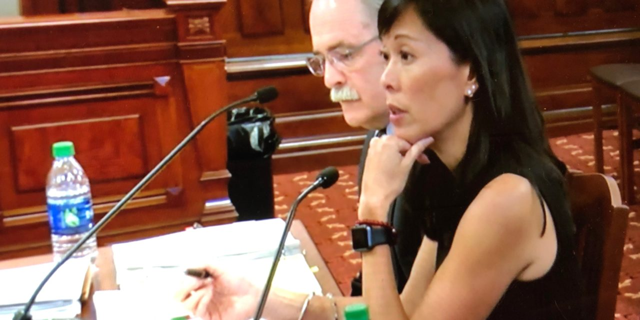 DHS Secretary-designate Hou talks Medicaid backlog, home services during hearing