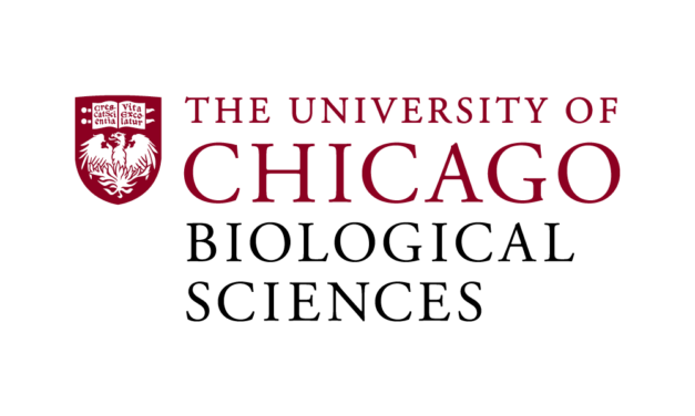University of Chicago, Leukemia & Lymphoma Society partner on data initiative